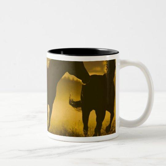 USA, Oregon, Seneca, Ponderosa Ranch. Two-Tone Coffee Mug