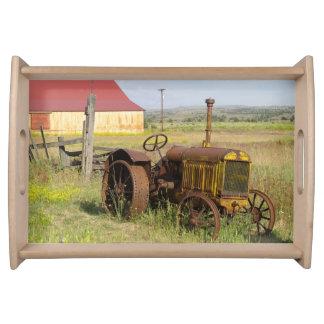 USA, Oregon, Shaniko. Rusty vintage tractor in Serving Tray