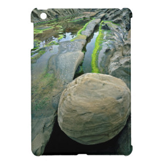USA, Oregon, Shore Acres State Park iPad Mini Case