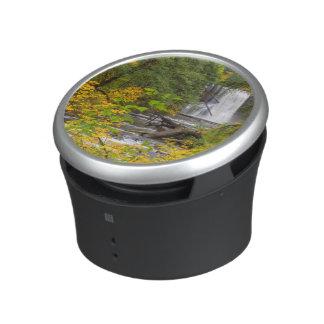 USA, Oregon, Silver Falls State Park 2 Bluetooth Speaker