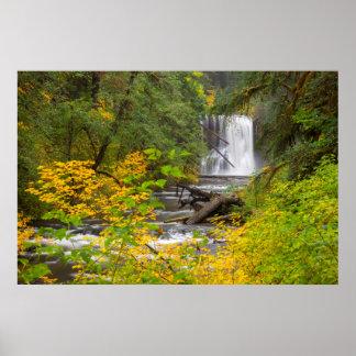 USA, Oregon, Silver Falls State Park 2 Poster