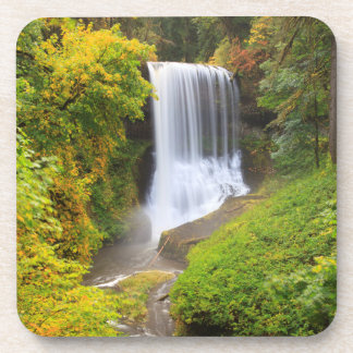 USA, Oregon, Silver Falls State Park 3 Drink Coaster