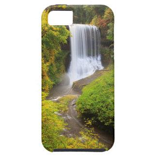 USA, Oregon, Silver Falls State Park 3 iPhone SE/5/5s Case