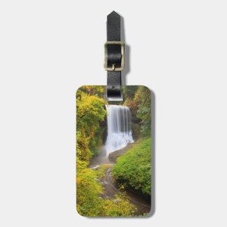 USA, Oregon, Silver Falls State Park 3 Luggage Tag