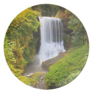 USA, Oregon, Silver Falls State Park 3 Melamine Plate