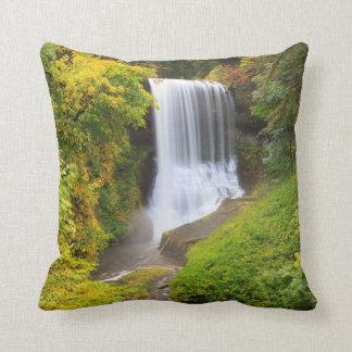 USA, Oregon, Silver Falls State Park 3 Pillow