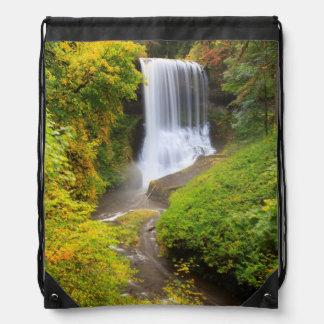 USA, Oregon, Silver Falls State Park 3 Cinch Bag