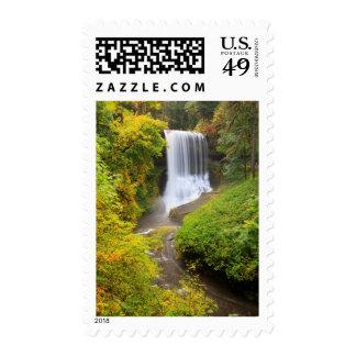 USA, Oregon, Silver Falls State Park 3 Postage Stamp