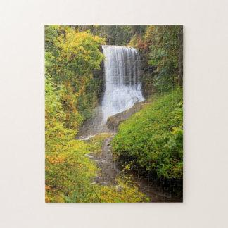 USA, Oregon, Silver Falls State Park 3 Puzzle