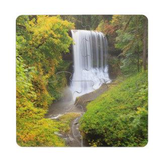 USA, Oregon, Silver Falls State Park 3 Puzzle Coaster