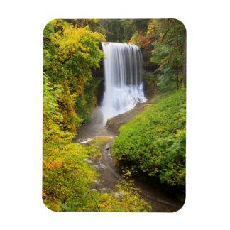 USA, Oregon, Silver Falls State Park 3 Rectangular Photo Magnet