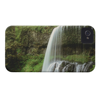 USA, Oregon, Silver Falls State Park. Lower iPhone 4 Case-Mate Case
