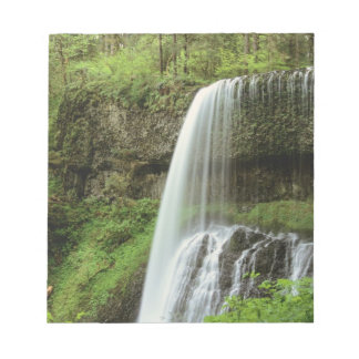 USA, Oregon, Silver Falls State Park. Lower Notepad