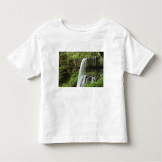 USA, Oregon, Silver Falls State Park. Lower T-shirts
