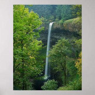 USA, Oregon, Silver Falls State Park Poster