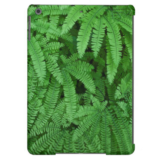USA, Oregon, Silverton. Maidenhair Ferns iPad Air Covers