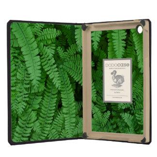 USA, Oregon, Silverton. Maidenhair Ferns iPad Mini Retina Case