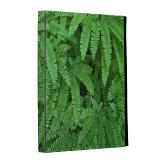 USA, Oregon, Silverton. Maidenhair Ferns iPad Cases