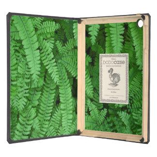 USA, Oregon, Silverton. Maidenhair Ferns iPad Air Case
