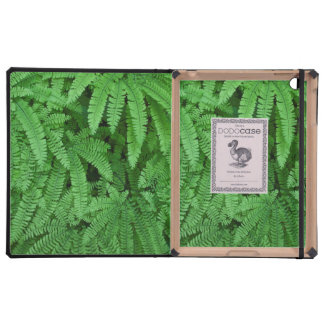 USA, Oregon, Silverton. Maidenhair Ferns Cases For iPad