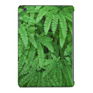 USA, Oregon, Silverton. Maidenhair Ferns iPad Mini Retina Covers