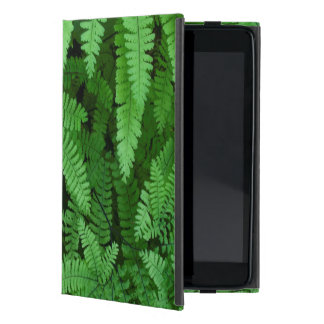 USA, Oregon, Silverton. Maidenhair Ferns iPad Mini Cover