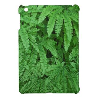 USA, Oregon, Silverton. Maidenhair Ferns iPad Mini Cases