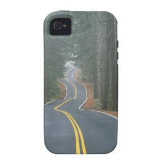 USA, Oregon, Sisiyou National Forest 2 Vibe iPhone 4 Case