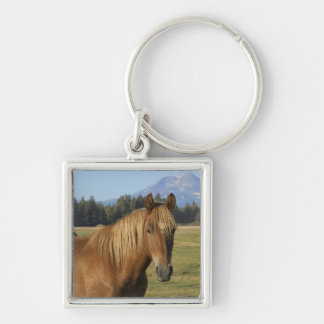 USA, Oregon, Sisters, view of Three Sisters, 2 Keychain