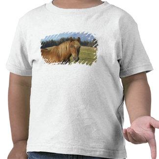 USA, Oregon, Sisters, view of Three Sisters, 2 Tee Shirts