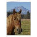 USA, Oregon, Sisters, view of Three Sisters, Greeting Card