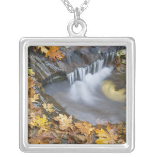 USA, Oregon, Sweet Creek. Fallen maple leaves Silver Plated Necklace