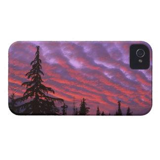 USA, Oregon, Three Sisters Wilderness, Vivid iPhone 4 Cover