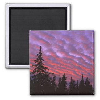 USA, Oregon, Three Sisters Wilderness, Vivid Fridge Magnets