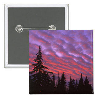 USA, Oregon, Three Sisters Wilderness, Vivid Pinback Button