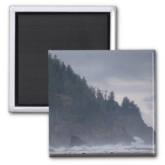 USA, Oregon, Tillamook County, Forest at coast Magnet
