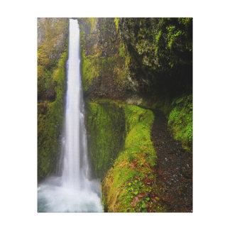 USA, Oregon. Top To Bottom View Of 130 Ft Canvas Print