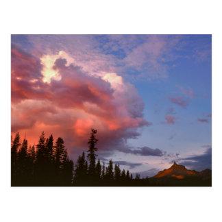 USA, Oregon, Umpqua National Forest. Storm Postcard