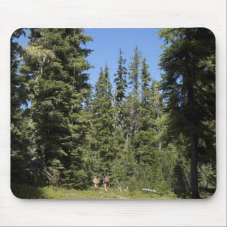 USA, Oregon, Willamette National Forest, Fall Mouse Pad