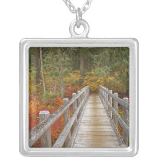 USA, Oregon, Willamette National Forest. Silver Plated Necklace