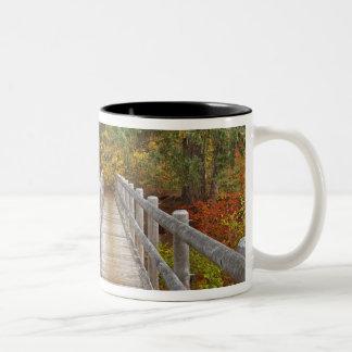 USA, Oregon, Willamette National Forest. Two-Tone Coffee Mug