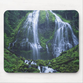 USA, Oregon, Willamette National Forest. View of Mouse Pad