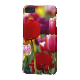 USA, Oregon, Willamette Valley. Beautiful iPod Touch (5th Generation) Cover