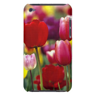 USA, Oregon, Willamette Valley. Beautiful iPod Touch Case