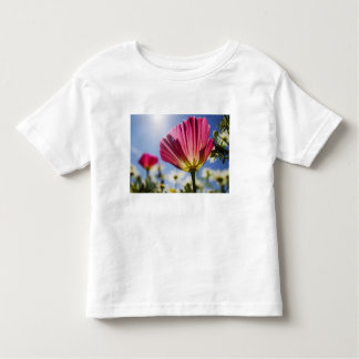 USA, Oregon, Willamette Valley, Close UP of Toddler T-shirt