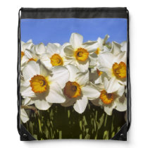 USA, Oregon, Willamette Valley. Daffodils grow Drawstring Backpack