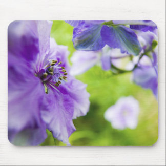USA, Oregon, Willamette Valley, Larkspur Close 2 Mouse Pad