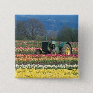 USA, Oregon, Woodburn, Wooden Shoe Tulip 2 Button