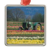 USA, Oregon, Woodburn, Wooden Shoe Tulip 2 Metal Ornament