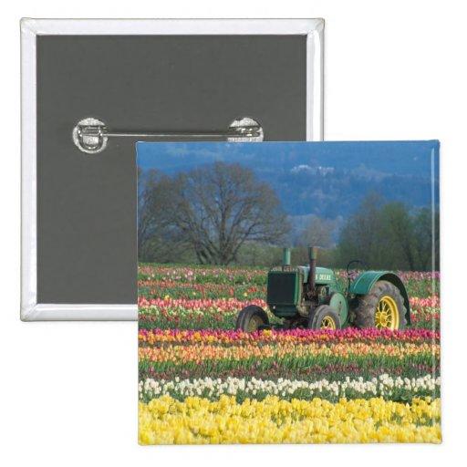 USA, Oregon, Woodburn, Wooden Shoe Tulip 2 Pins